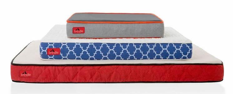 BRINDLE Memory Foam Pet Bed