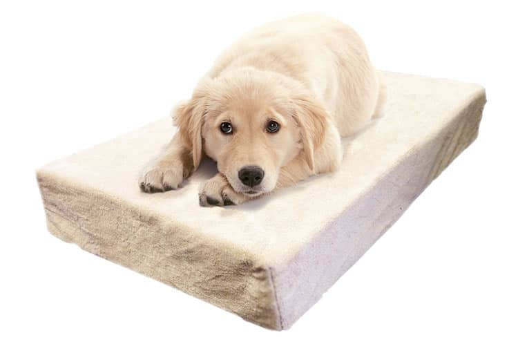 Milliard Orthopedic Memory foam bed