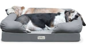 PetFusion Ultimate Dog Bed & Lounge Review
