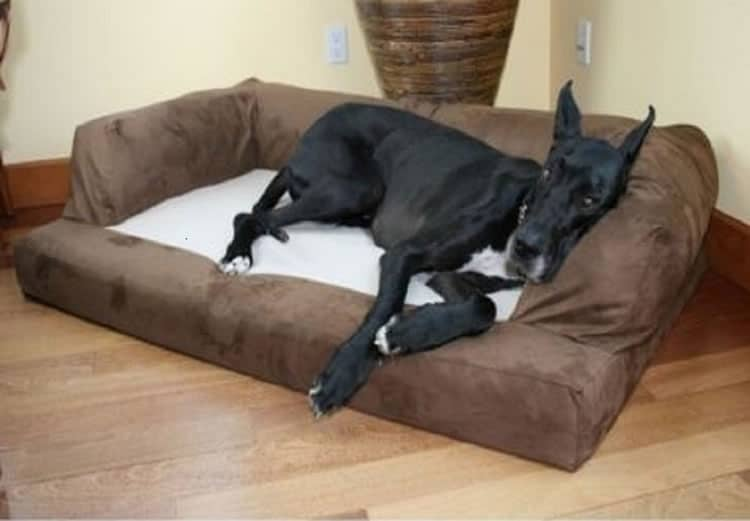 XXL Dog Bed Orthopedic Foam Sofa Couch Extra Large Size