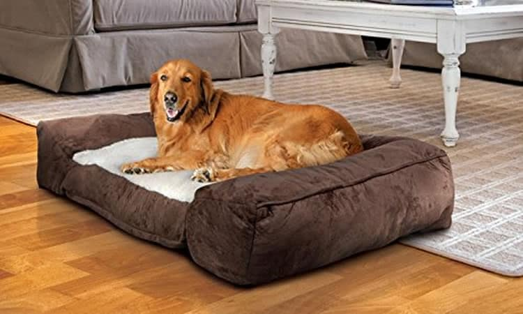 animal planet dog bed
