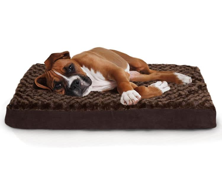 furhaven Pet orthopedic mattress