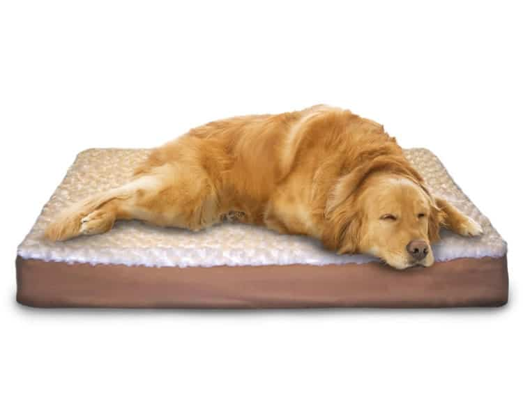 furhaven dog orthopedic bed