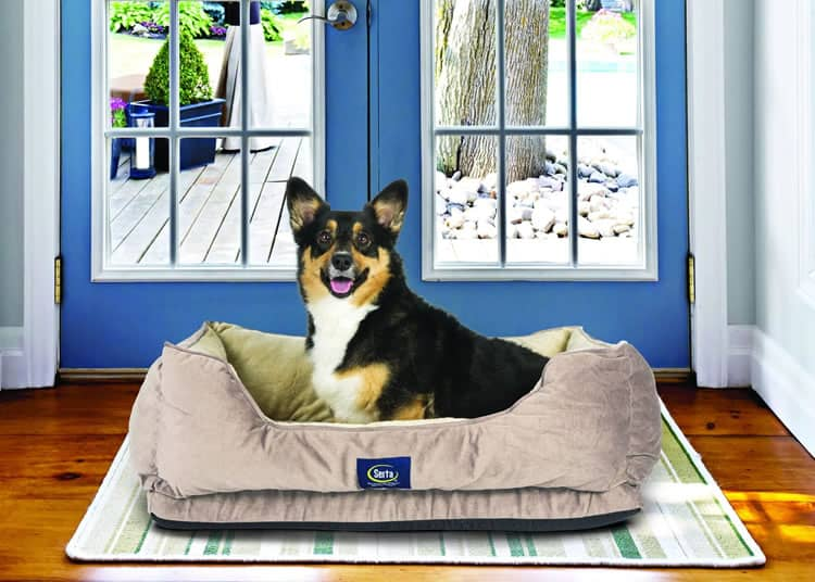 Serta Cuddler Orthopedic Dog bed