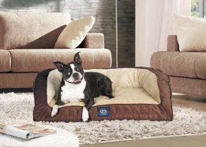 Serta Orthopedic Quilted Couch Dog Bed Review
