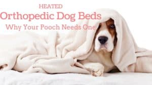 Heated Orthopedic Dog Beds: Why Your Pooch Needs One