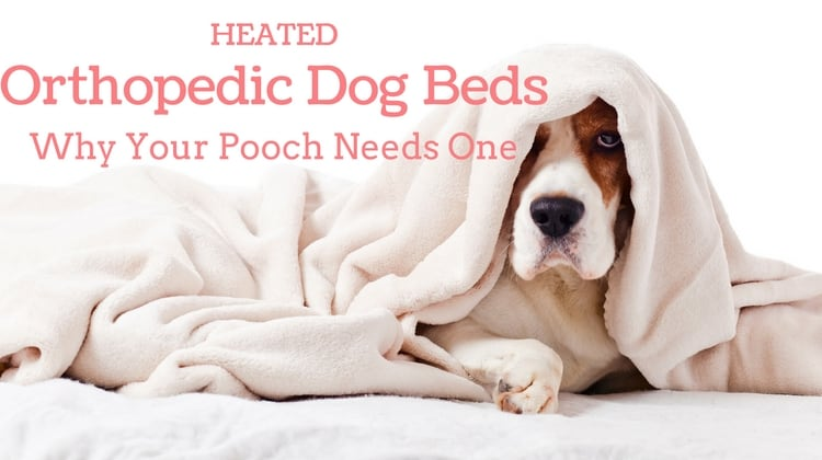 heated dog beds